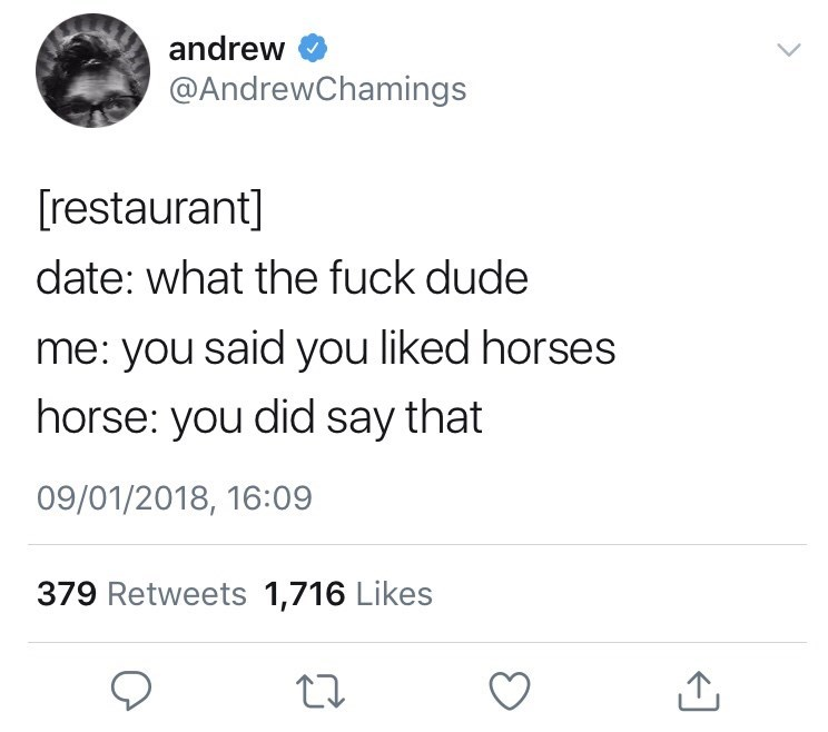 Text - andrew @AndrewChamings [restaurant] date: what the fuck dude me: you said you liked horses horse: you did say that 09/01/2018, 16:09 379 Retweets 1,716 Likes