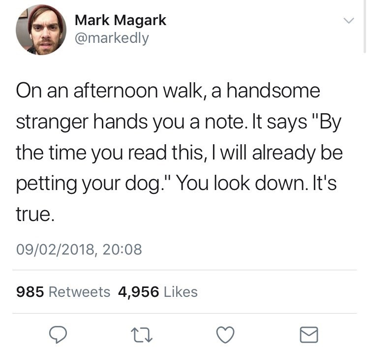 "Text - Mark Magark @markedly On an afternoon walk, a handsome stranger hands you a note. It says ""By the time you read this, I will already be petting your dog."" You look down. It's true. 09/02/2018, 20:08 985 Retweets 4,956 Likes"