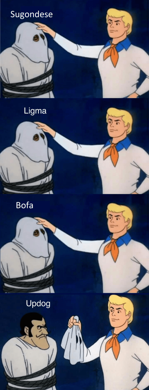 meme of Scooby Doo OK, gang lets find out who, and ligma, bofa, sugondese are all updog