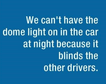 parenting lie - Text - We can't have the dome light on in the car at night because it blinds the other drivers.