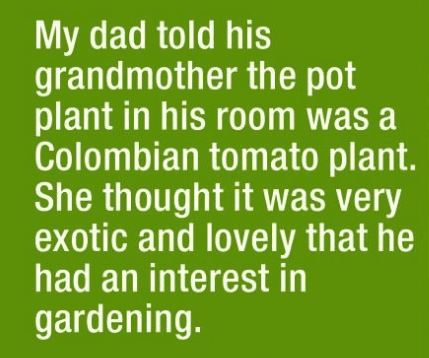 parenting lie - Text - My dad told his grandmother the pot plant in his room was a Colombian tomato plant. She thought it was very exotic and lovely that he had an interest in gardening.