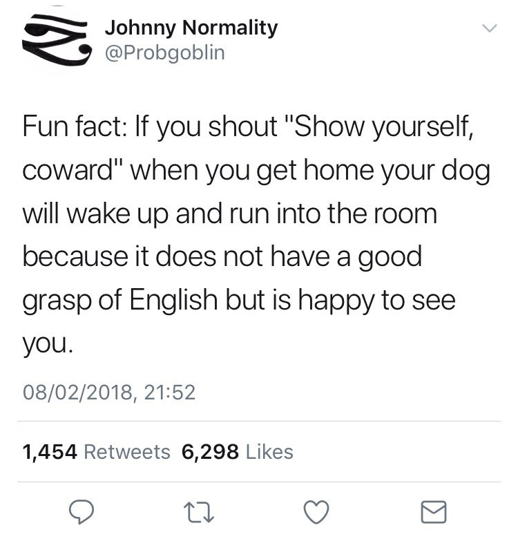 "Text - Johnny Normality @Probgoblin Fun fact: If you shout ""Show yourself, coward"" when you get home your dog will wake up and run into the room because it does not have a good grasp of English but is happy to see you. 08/02/2018, 21:52 1,454 Retweets 6,298 Likes"