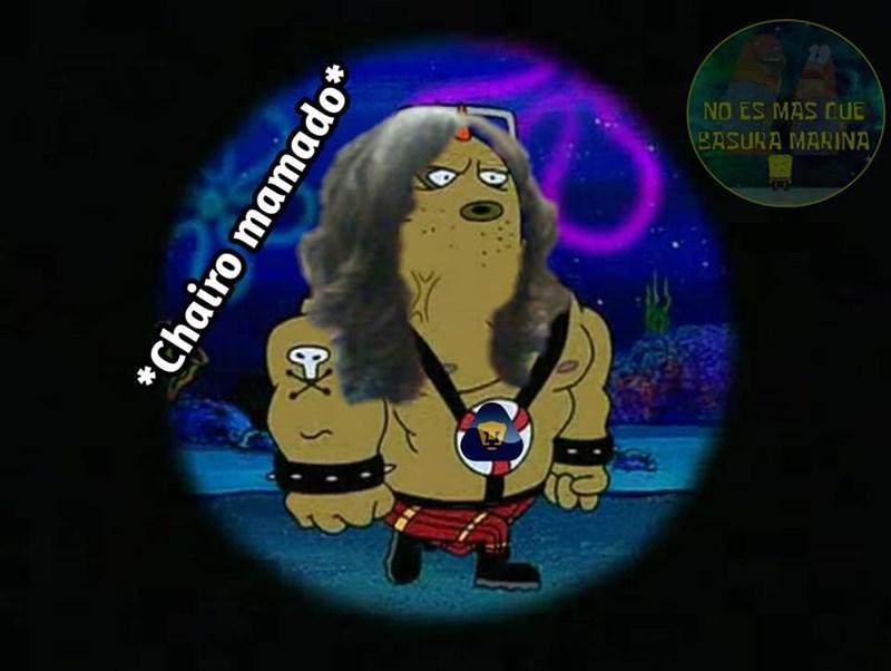 Cheezburger Image 9195607040