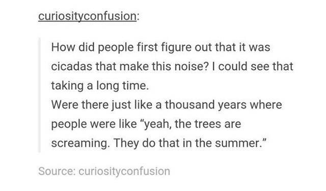 """meme - Text - curiosityconfusion: How did people first figure out that it was cicadas that make this noise? I could see that taking a long time. Were there just like a thousand years where people were like """"yeah, the trees are screaming. They do that in the summer."""" Source: curiosityconfusion"""