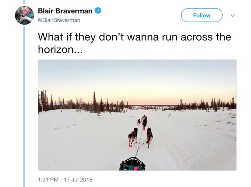 Snow - Blair Braverman Follow @BlairBraverman What if they don't wanna run across the horizon... 1:31 PM 17 Jul 2018