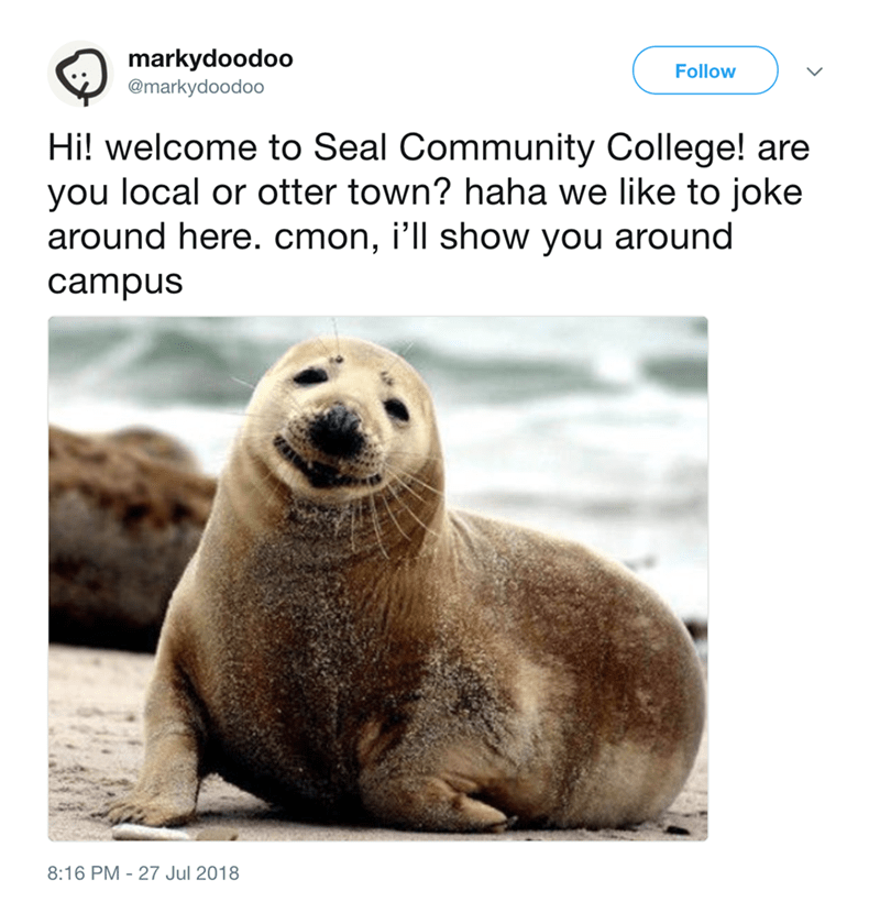 Vertebrate - markydoodoo Follow @markydoodoo Hi! welcome to Seal Community College! are you local or otter town? haha we like to joke around here. cmon, i'll show you around campus 8:16 PM 27 Jul 2018