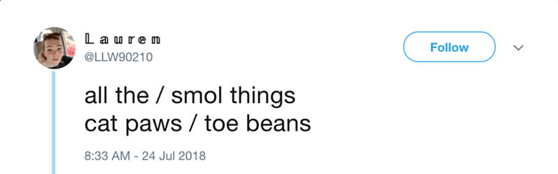 Text - L aure m Follow @LLW90210 all the smol things cat paws toe beans 8:33 AM 24 Jul 2018