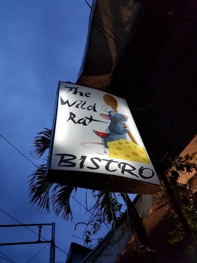 Sky - The Witd Rat BISTRO