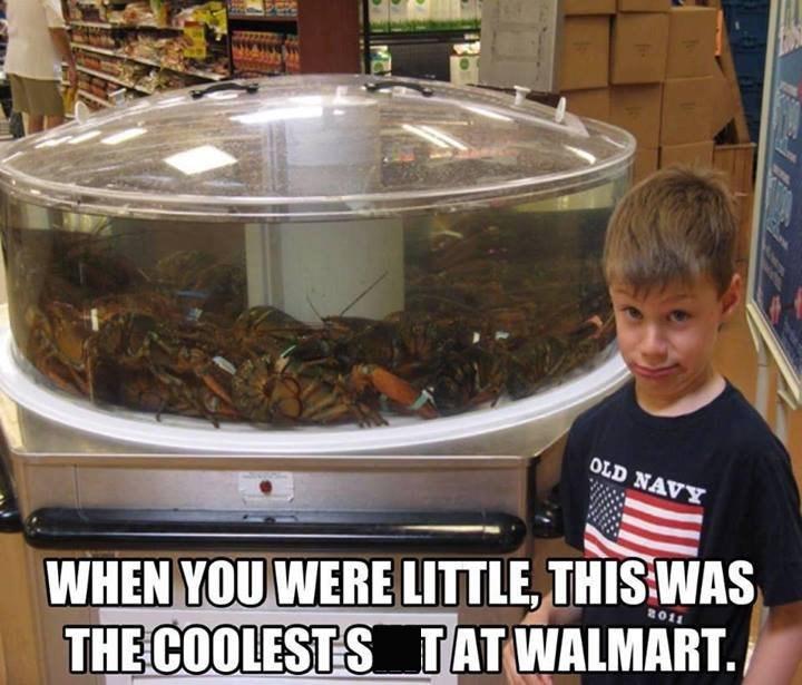 Walmart Meme - OLD NAVY WHEN YOU WERE LITTLE, THIS WAS THE COOLESTSTATWALMART.