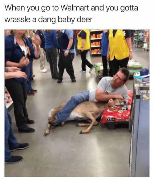 Walmart Meme - Planking - When you go to Walmart and you gotta wrassle a dang baby deer