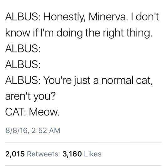 Text - ALBUS: Honestly, Minerva. I don't know if I'm doing the right thing. ALBUS: ALBUS: ALBUS: You're just a normal cat, aren't you? CAT: Meow. 8/8/16, 2:52 AM 2,015 Retweets 3,160 Likes