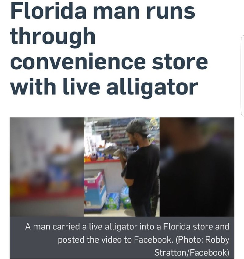 Text - Florida man runs through convenience store with live alligator A man carrieda live alligator into a Florida store and posted the video to Facebook. (Photo: Robby Stratton/Facebook)