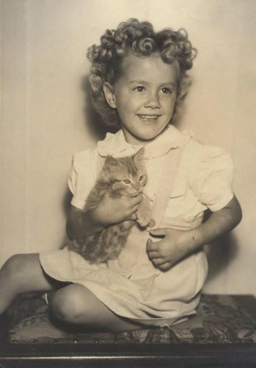 cute cat vintage - Photograph