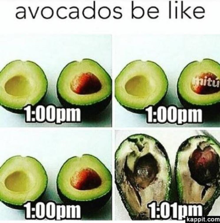 Timeline of when avocados are actually ripe enough to eat