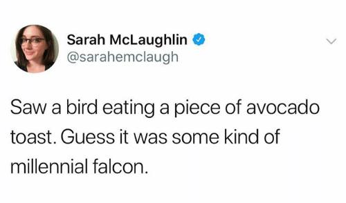 avocado meme - Text - Sarah McLaughlin @sarahemclaugh Saw a bird eatinga piece of avocado toast. Guess it was some kind of millennial falcon.