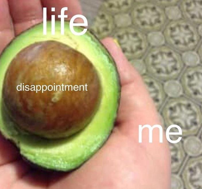 avocado meme - Avocado - life a disappointment me
