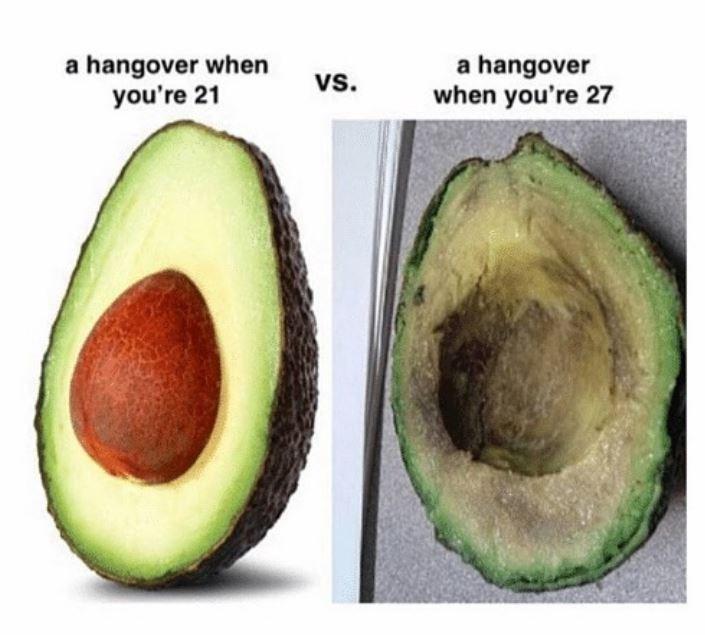 avocado meme - Avocado - a hangover when you're 21 a hangover when you're 27 Vs.