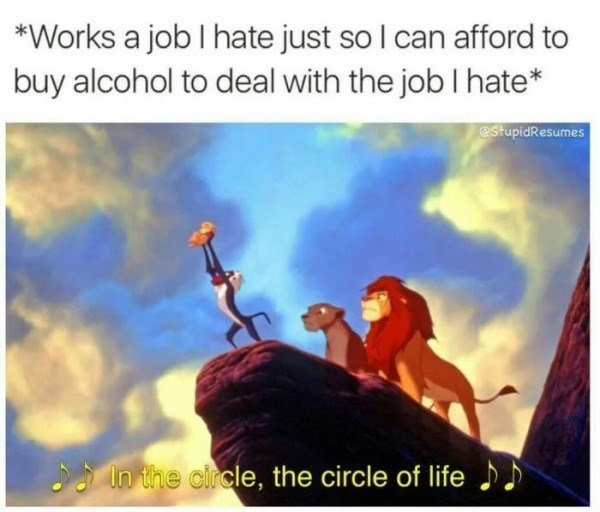 "Still from The Lion King's 'The Circle of Life' with the caption, ""Works a job I hate just so I can afford to buy alcohol to deal with the job I hate"""