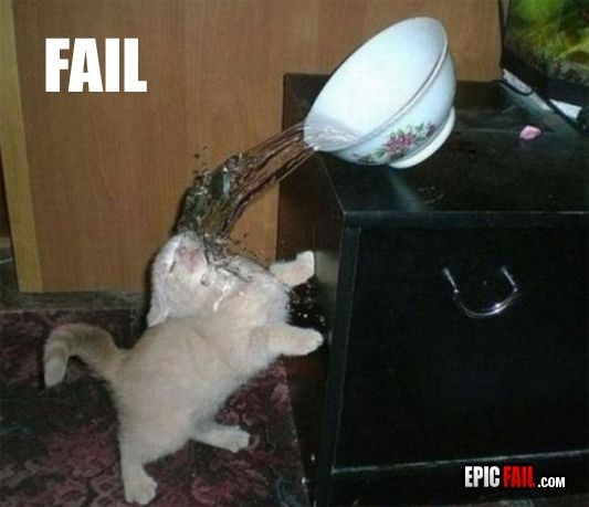 Cat - FAIL EPIC FAIL.cOM cat spilling water on self