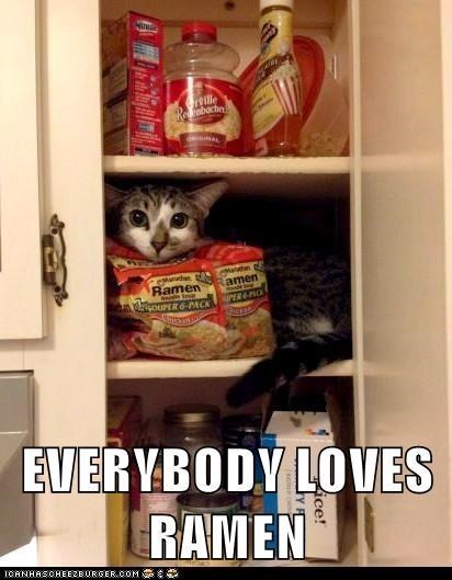 Cat - roille bocbe AL Mad Ramen ouPER 6-PACK amen EVERYBODY LOVES RAMEN ICANHASCHEEZEURGEROOM