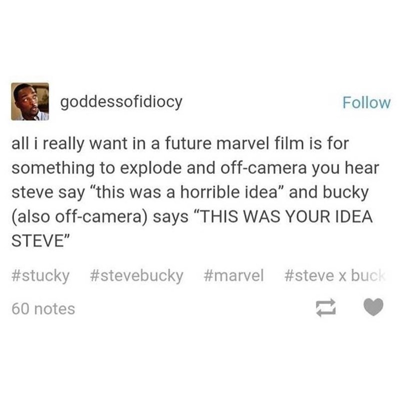 "Text - goddessofidiocy Follow all i really want in a future marvel film is for something to explode and off-camera you hear steve say ""this was a horrible idea"" and bucky (also off-camera) says ""THIS WAS YOUR IDEA STEVE"" #stucky #stevebucky #marvel #steve x buck 60 notes"