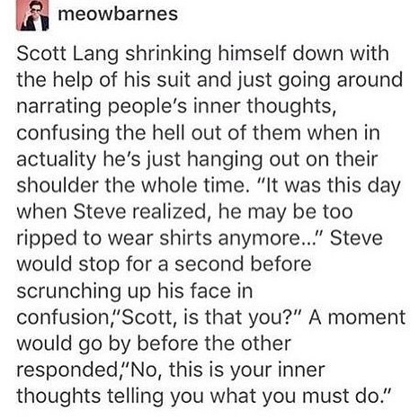 "Text - meowbarnes Scott Lang shrinking himself down with the help of his suit and just going around narrating people's inner thoughts, confusing the hell out of them when in actuality he's just hanging out on their shoulder the whole time. ""It was this day when Steve realized, he may be too ripped to wear shirts anymore..."" Steve would stop for a second before scrunching up his face in confusion,""Scott, is that you?"" A moment would go by before the other responded,""No, this is your inner thought"