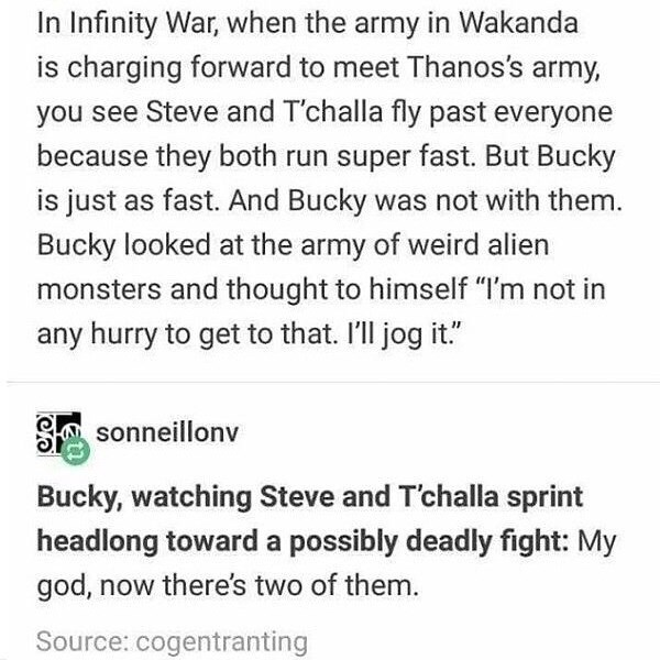 "Text - In Infinity War, when the army in Wakanda is charging forward to meet Thanos's army, you see Steve and T'challa fly past everyone because they both run super fast. But Bucky is just as fast. And Bucky was not with them. Bucky looked at the army of weird alien monsters and thought to himself ""I'm not in any hurry to get to that. I'll jog it."" sonneillonv Bucky, watching Steve and T'challa sprint headlong toward a possibly deadly fight: My god, now there's two of them. Source: cogentranting"