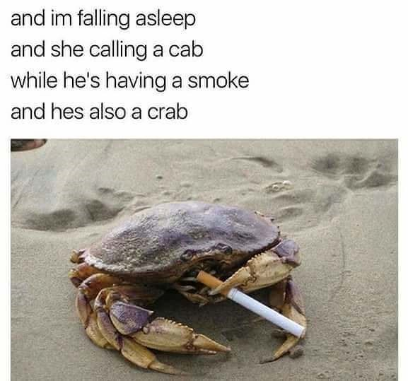 music meme - Crab - and im falling asleep and she calling a cab while he's having a smoke and hes also a crab
