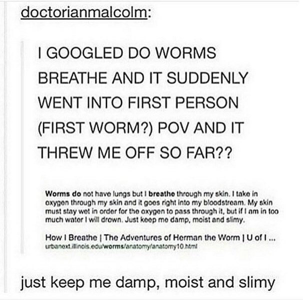 Wednesday hump day meme of a Tumblr post about reading instructions written by a worm