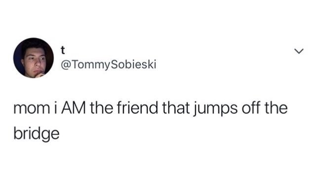 tweet joking that mom, I am the friend that jumps off the bridge