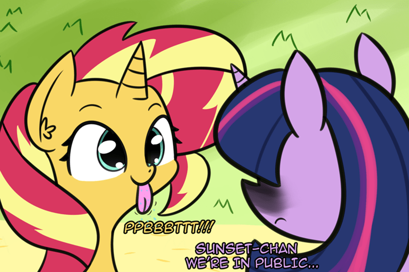 shipping twilight sparkle artik sunset shimmer - 9198321664