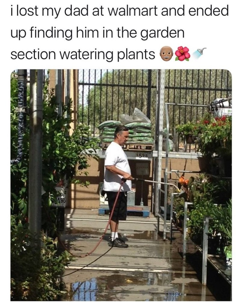"Pic of a middle-aged guy watering some plants under the caption, ""I lost my dad at Walmart and ended up finding him in the garden section watering plants"""