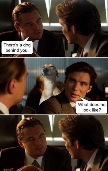 Leonardo Dicaprio tells Cillian Murphy in Inception that there's a dog behind him; Murphy asks what it looks like and Dicaprio mimes the dog's smug facial expression