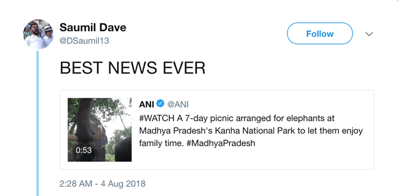 Text - Saumil Dave Follow @DSaumil13 BEST NEWS EVER ANI @ANI #WATCH A 7-day picnic arranged for elephants at Madhya Pradesh's Kanha National Park to let them enjoy family time. #MadhyaPradesh 0:53 2:28 М- 4