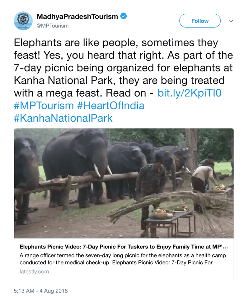 Text - MadhyaPradeshTourism Follow @MPTourism Elephants are like people, sometimes they feast! Yes, you heard that right. As part of the 7-day picnic being organized for elephants at Kanha National Park, they are being treated with a mega feast. Read on - bit.ly/2KpiTI0 #MPTourism #HeartOfIndia #KanhaNationalPark Elephants Picnic Video: 7-Day Picnic For Tuskers to Enjoy Family Time at MP'... A range officer termed the seven-day long picnic for the elephants as a health camp conducted for the med