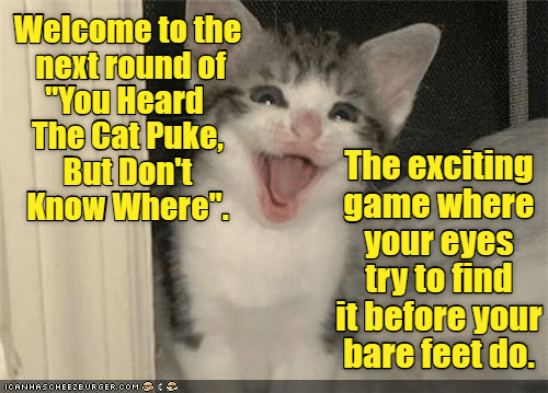 """cat meme - Cat - Welcome to the next round of """"You Heard The Cat Puke, But Don't Know Where"""" The exciting game where your eyes try to find it before your bare feet do. nCANHASCHEEZEURGER COM"""