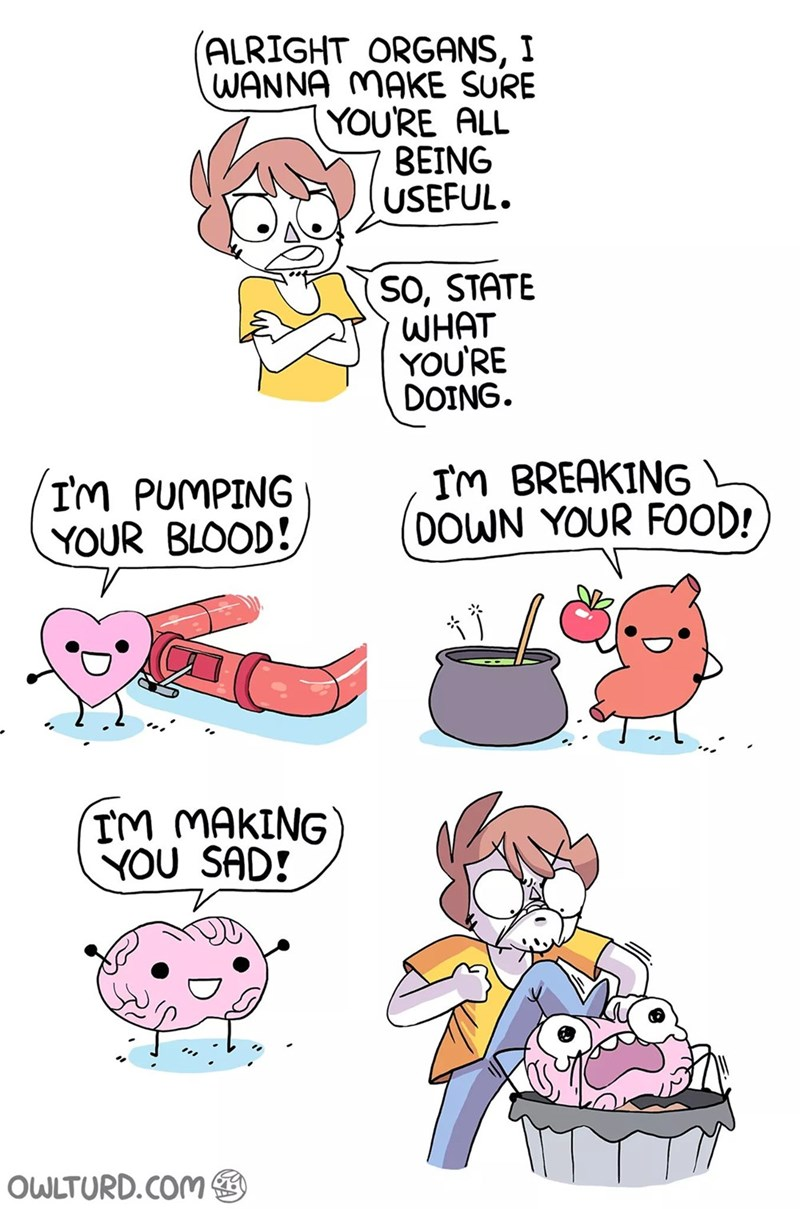 Cartoon - ALRIGHT ORGANS, I WANNA MAKE SURE YOU'RE ALL BEING USEFUL SO, STATE WHAT YOU'RE DOING Im BREAKINGL OOWN YOUR F0OD! IM PUMPING YOUR BLOOD! TM MAKING YOU SAD! OWLTURD.COM