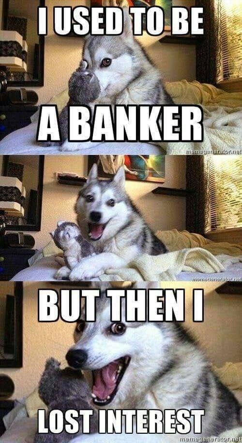 Mammal - IUSED TO BE A BANKER nemegeneratornet mamotenerator.net BUT THENI LOST INTEREST memegenerator.net