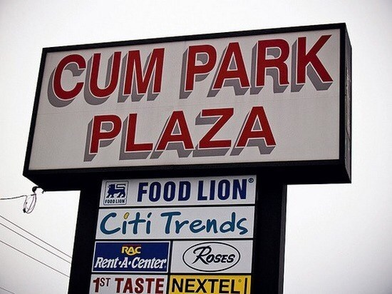Signage - CUM PARK PLAZA FOOD LION Citi Trends RAC Rent A Center ROSES 1ST TASTE NEXTEL 