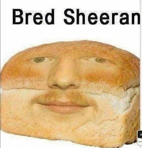 ed sheeran meme - Food - Bred Sheeran