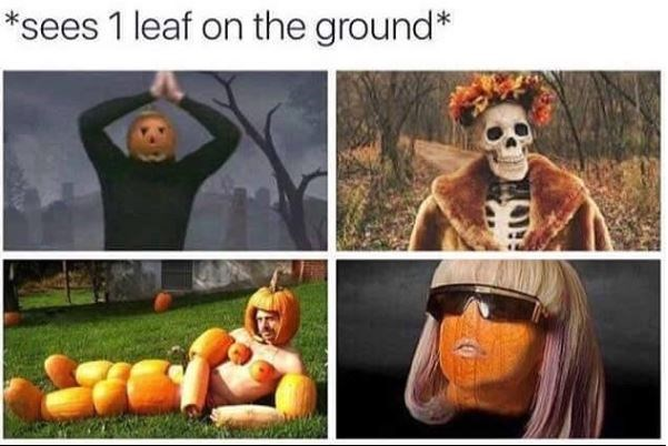 "Pictures of stereotypical fall things under the caption, ""Sees one leaf on the ground"""