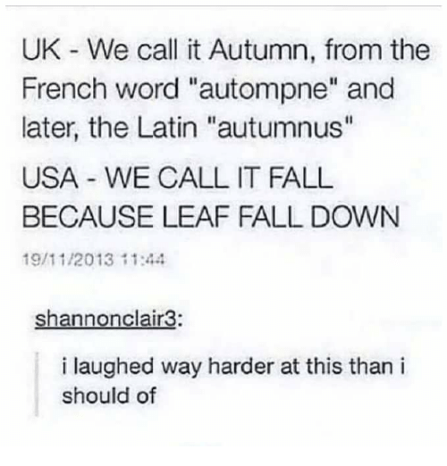 "Text - UK - We call it Autumn, from the French word ""autompne"" and later, the Latin ""autumnus"" USA WE CALL IT FALL BECAUSE LEAF FALL DOWN 19/11/2013 11:44 shannonclair3: i laughed way harder at this than i should of"