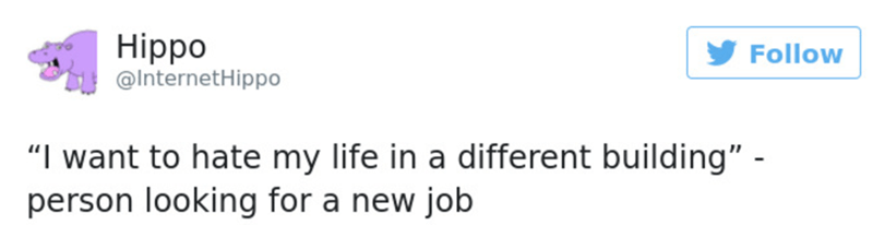 """Text - Hippo @InternetHippo Follow """"I want to hate my life in a different building"""" - person looking for a new job"""