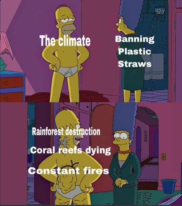 simpsons meme about how banning plastic straws excludes so many other man made distructions