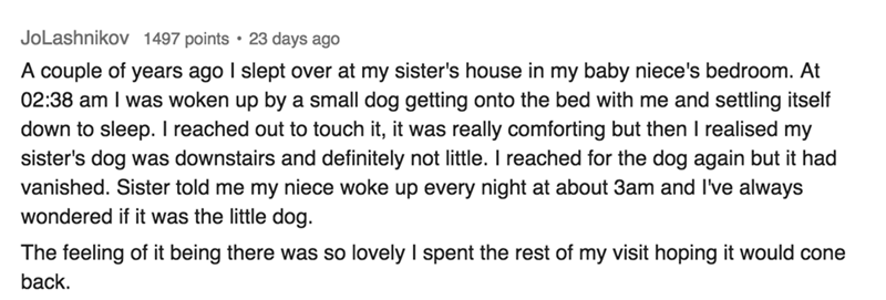 Text A couple of years ago I slept over at my sister's house in my baby niece's bedroom. At 02:38 am I was woken up by a small dog getting onto the bed with me and settling itself down to sleep. I reached out to touch it, it was really comforting but then I realised my sister's dog was downstairs and definitely not little. I reached for the dog again but it had vanished. Sister told me my niece woke up every night at about 3am and I've always wondered if it
