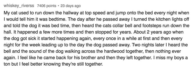 Text My cat used to run down the hallway at top speed and jump onto the bed every night when I would tell him it was bedtime. The day after he passed away I turned the kitchen lights off and told the dog it was bed time, then heard the cats collar bell and footsteps hall. It happened a few more times and then stopped for years. About 2 years ago when the dog got sick it started happening again, every once in a while at first and then every night for the