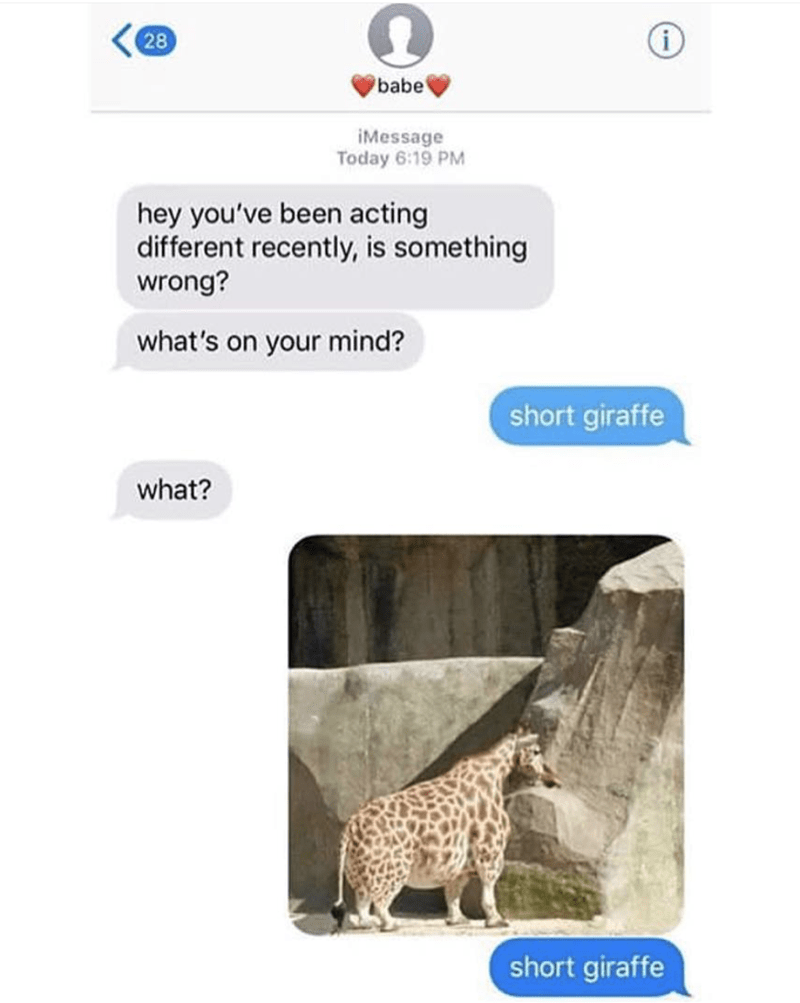 "Text conversation between a couple where the first asks what's wrong and the second replies, ""short giraffe"" with a pic of a short, fat giraffe"""
