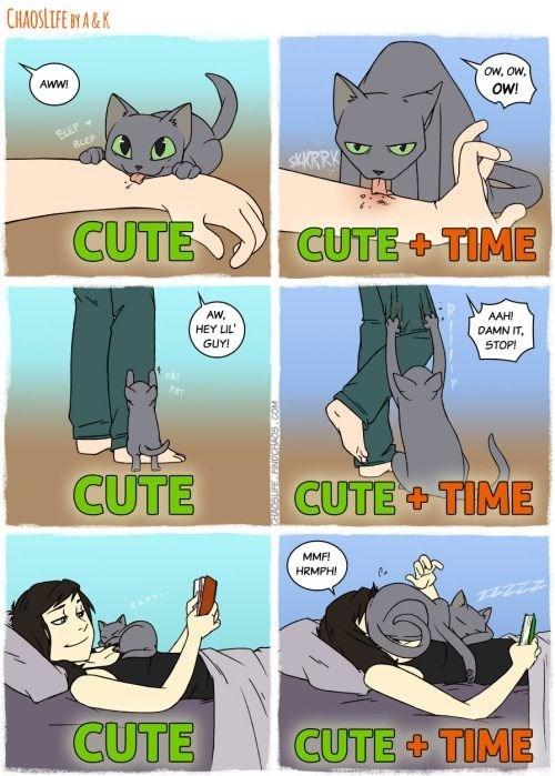 Cartoon - CHAOSLIFE BY A&K OW, OW, AWW OW! BLEP BLEP SKKRRK CUTE CUTE+ TIME AW AAH! HEY LIL DAMN IT, STOP! GUY! CUTE CUTE TIME MMF! HRMPH! CUTE CUTE+ TIME PNOCOOCINEMCOM