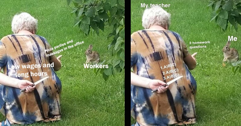 Funny dank memes entitled, 'Grandma Hiding Knife From Rabbit'