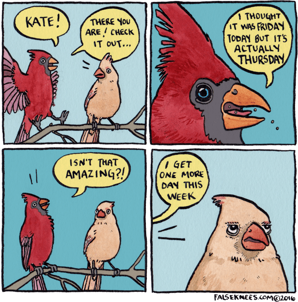 Two birds talking about how one of them thought it was Friday but it's actually Thursday